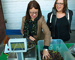 Alison uses magic fingers to guess which grapes came from which London borough