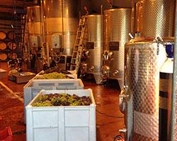 The 2013 batch process begins