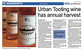 Urban Tooting wine has annual harvest