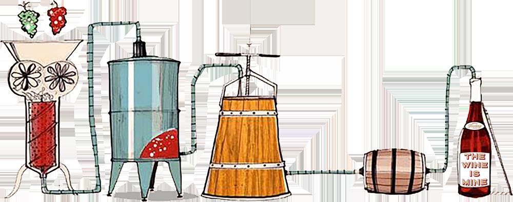 The Wine Process Illustration